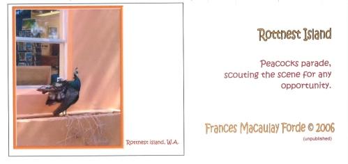 06FMF Postcard 7