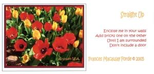 05FMF Postcard 2
