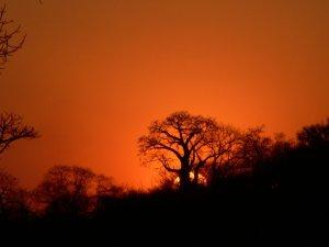 0911Zambian Sunset