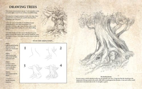drawing trees1_sml