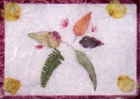 No-26-Artwork-20071